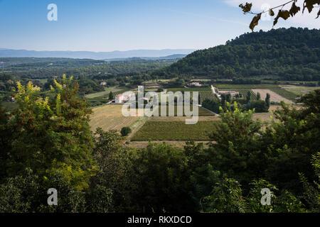 Vineyards in Menerbes, France - Stock Image