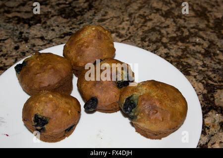gourmet blueberry muffins, homade - Stock Image