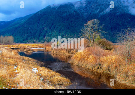 Pitt Polder creek in early March with dried grass on either side and a mountain in the background. - Stock Image