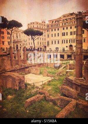 View of Largo di Torre Argentina square within the ancient Campus Martius, where Julius Caesar is believed to have - Stock Image
