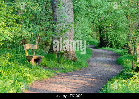 Single bench, path, Celle, Germany - Stock Image
