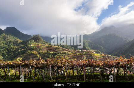 Houses and landscape on the Madeira island, Portugal. - Stock Image