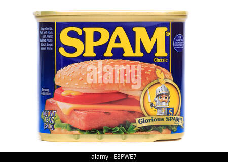 A tin can of glorious SPAM - Stock Image