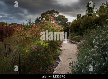 Macclesfield, Australia. 25th, Oct 2017.  House in Macclesfield, view of domestic garden, in the Adelaide Hills region, in the District Council of Mou - Stock Image