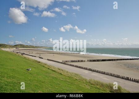 dike,dunes,beach with groynes and north sea in zoutelande,walcheren,zeeland,southern netherlands - Stock Image
