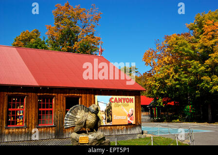 Carved wooden wild turkey at entrance building Canyon Sainte Anne Park - Stock Image