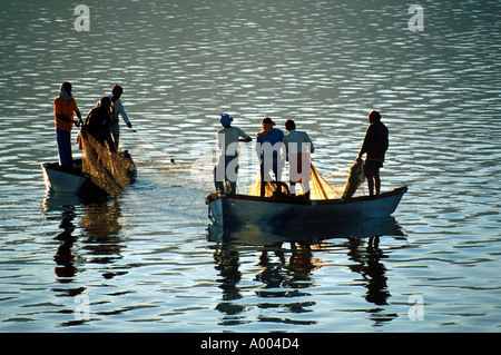 Fishermen Fishing, Lake Pichola, Udaipur, Rajasthan, India - Stock Image