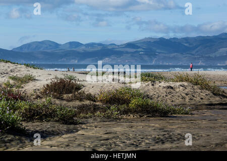 Looking north along the central Californian coast from  Pismo Beach sand dunes - Stock Image