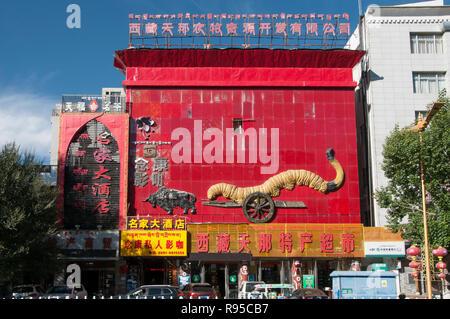 Billboard in Lhasa, Tibet, China - Stock Image