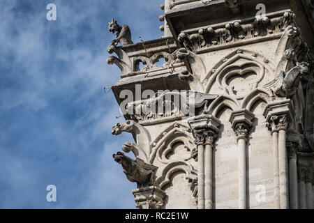 Chimera and gargoyles look down from a tower on Notre Dame Cathedral, Paris, France - Stock Image