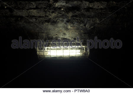 Cobwebs illuminated by an electric light, mounted on an old brick built ceiling / tunnel wall. - Stock Image