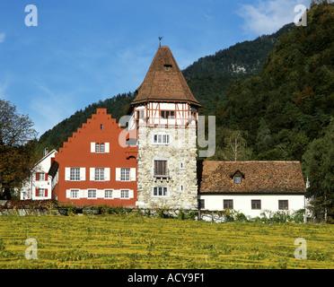 Europe Liechtenstein Vaduz Red house vineyards - Stock Image