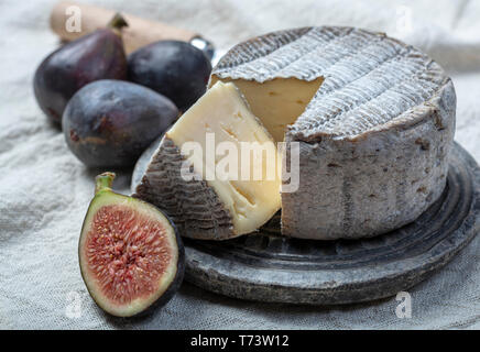 Round mature French Tomme cheese with one cutted piece served with black grape and fresh ripe figs close up - Stock Image