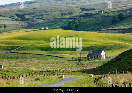 Teesdale, County Durham, UK.  15th June 2019. UK Weather.  After days of heavy rain which caused flooding in many parts of the UK the sun breaks through illuminating the wild flower meadows and gardens for which the North Pennine valley of Upper Teesdale is noted for.  The North Pennines Area of Outstanding Natural Beauty contains 40% of these rare meadows and flowers. Credit: David Forster/Alamy Live News - Stock Image