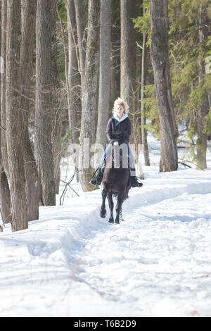 A winter forest. A young blonde woman in warm jacket riding a black horse on snowy ground - Stock Image