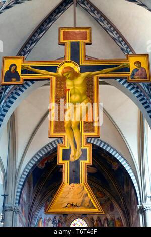 Crucifix,  by Giotto, circa 1288-1289, Basilica di Santa Maria Novella, Church of Santa Maria Novella, Florence, Tuscany, Italy, Europe - Stock Image
