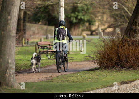 Man riding a bicycle tethered by a lead to a dog running beside him - Stock Image