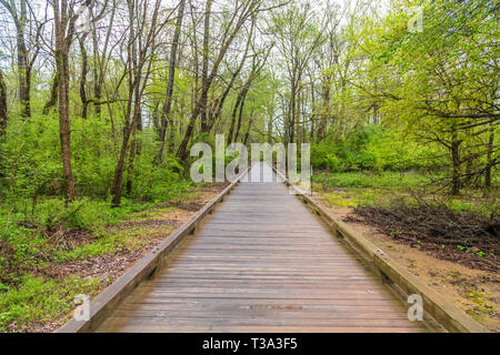 Straight Stretch of Walkway - Stock Image