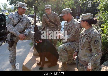 Sgt. Keave C. Sham, Spc. Jasmine Tirado, Spc. Joseph Zabala and Pfc. Jennifer Preciado, members of the 870th Military - Stock Image