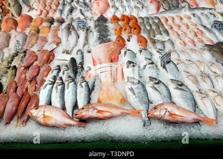 Fish display at fish sellers shop in Brixton Market, South London England UK  KATHY DEWITT - Stock Image