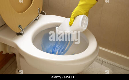 A woman wearing rubber gloves pouring cleaner into a toilet bowl - Stock Image
