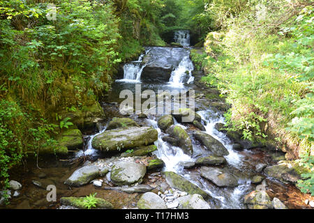 Waterfalls and cascades on the riverside walk between Watersmeet and Lynmouth in Devon, UK - Stock Image