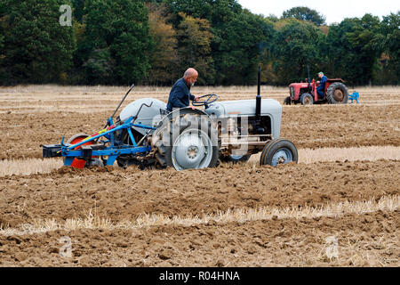 Classic Ferguson tractors at a ploughing match during the 2018 Skeyton Trosh event in Norfolk. - Stock Image