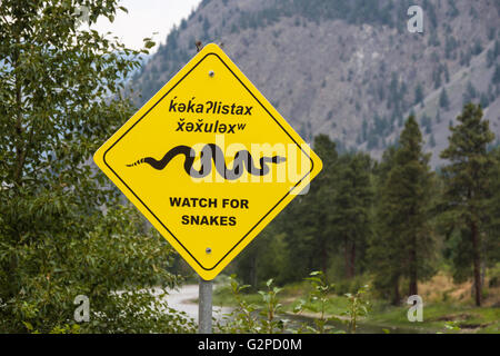 Dual language rattlesnake warning sign in English and Nsyilxcen, the native language of the Okanagan people of BC, - Stock Image