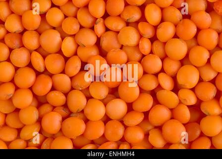 Red lentils full frame close up background. - Stock Image
