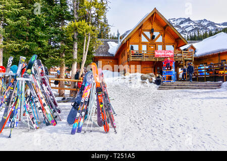 LAKE LOUISE, CANADA - MAR 23, 2019: Colorful skis and snowboads line the rack outside the old and rustic Temple Lodge at Lake Louise in the back mount - Stock Image