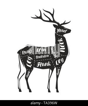 Deer meat cutting. Menu for restaurant or butcher shop. Vector - Stock Image