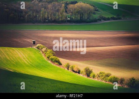 sunset lines and waves in the spring - Stock Image