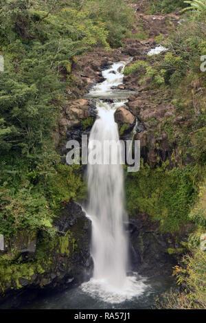 Waterfall and lush tropical foliage in Big Island Hawaii - Stock Image