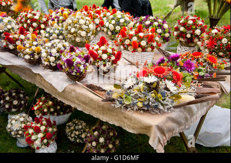 Colorful flowers arrangements at fair on May day picnic in Janowiec Castle in Poland, leisure during Swedes invasion - Stock Image