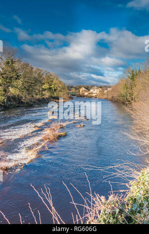 Teesdale landscape, view of the river Tees upstream from The Demesnes at Barnard Castle in winter sunshine and dramtic light, with copy space - Stock Image