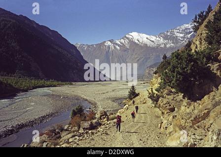 Trekkers walking south from Marpha down Kali Gandaki worlds deepest valley on Annapurna circuit Himalayas Nepal - Stock Image