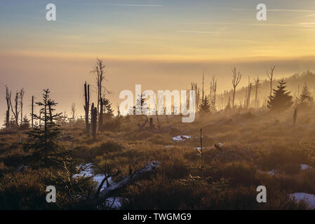 Sunset on Wielka Sowa (Great Owl) mount in Landscape Park of Gory Sowie (Owl Mountains range) in Central Sudetes, Poland - Stock Image