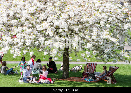 Bath, Somerset, UK. 19th Apr, 2019. With many parts of the UK expecting to experience very warm weather over the easter bank holiday period people are pictured enjoying the warm sunshine in Parade Gardens. Credit: lynchpics/Alamy Live News - Stock Image