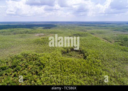 Naples Florida Collier County Everglades Big Cypress National Preserve aerial overhead bird's eye view above - Stock Image