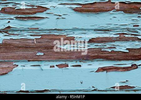 Flaking paint on a beach hut at Abersoch, Gwynedd, Wales - Stock Image