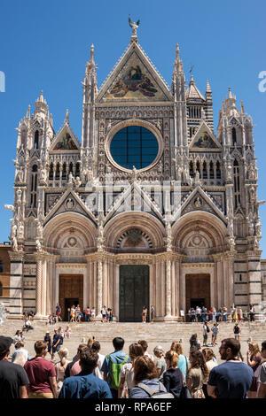 Duomo di Siena (Siena Cathedral), Tuscany, Italy - Stock Image
