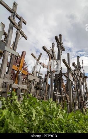 The Hill of Crosses - a site of religious pilgrimage near Siauliai in northern Lithuania. Over the generations, many thousands of crosses, crucifixes, - Stock Image