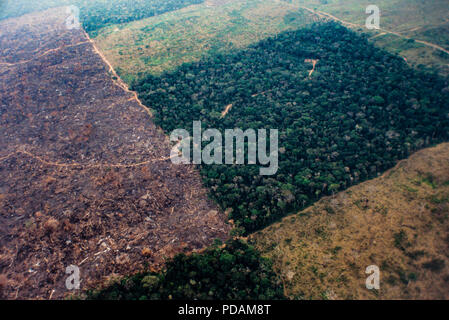 Aerial view of Amazon rainforest deforestation and farm management for livestock. Acre State, Brazil. - Stock Image