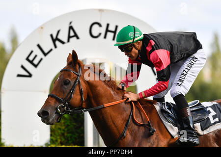 Prague, Czech Republic. 22nd Sep, 2018. European Jockeys Cup 2018 winner jockey Bauyrzhan Murzabayev (CZE), in Prague - Chuchle, Czech Republic, on Saturday, September 22, 2018. Credit: Michal Kamaryt/CTK Photo/Alamy Live News - Stock Image