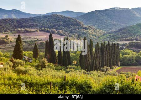 Landscape,  Mount Athos, Athos peninsula, Greece - Stock Image
