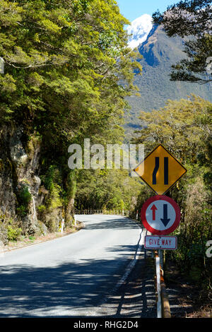 Road narrowing to one way across a bridge in Fjordland National Park, New Zealand - Stock Image