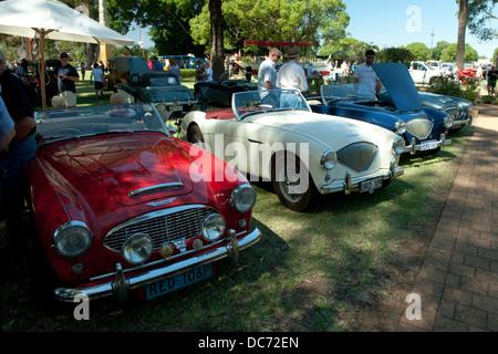 A line of Austin-Healey sportscars. - Stock Image