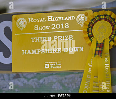 3rd.place prizewinner's certificate and rosette for Hampshire Down sheep. Royal Highland Show 2018, Ingliston, Edinburgh, Scotland, United Kingdom, Eu - Stock Image