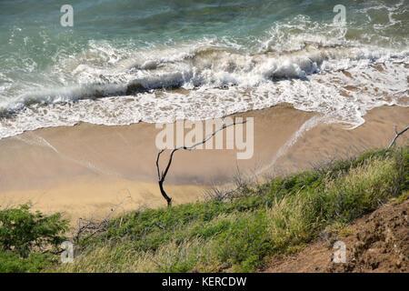 Beachfront overlook - Oahu, Hawaii - Stock Image