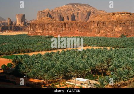 Saudi Arabia, Madinah, Al-Ula. Date plantations lie amidst picturesque scenery in the oasis surrounding Al-Ula. - Stock Image